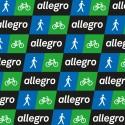 Huisstijl voor ERC-project ALLEGRO